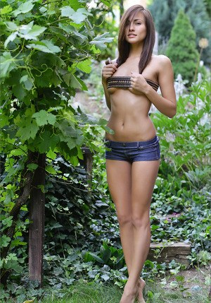 Pussy in Shorts Pics