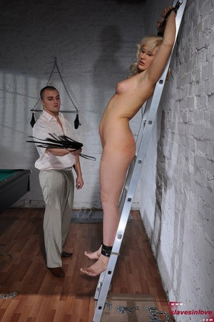 Pussy Whip Pics